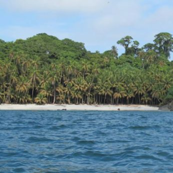 From a Cursed Island to a Paradise: Gorgona Island National Natural Park